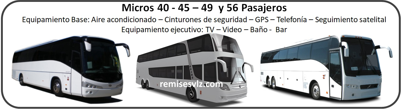 remisesvlz-buses